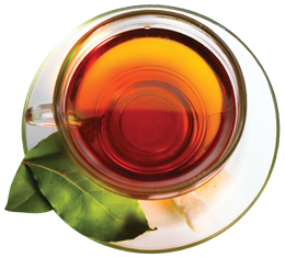 Okuma's Premium Oolong Tea